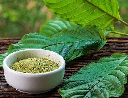 Red Bali Kratom 101: Untold Truth About This Strain Inside